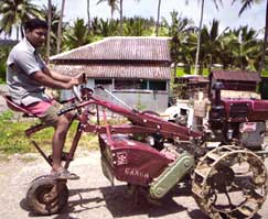 Andaman's post-tsunami days see rotting neem cakes, unused tillers