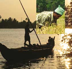 Kerala's backwaters carry modern-day brunt