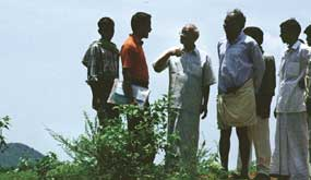 High yields in Andhra's pesticide-free village