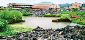 Action against polluting units gives Goa villagers some relief