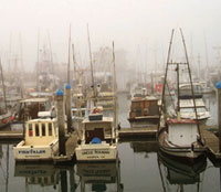 Most extensive network of marine protected areas to come up in US