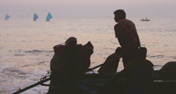 Olive Ridley preservation hits fishermen in Orissa