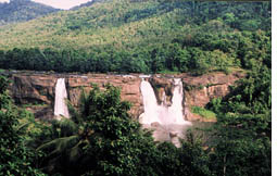 Athirapally: Chasing the water (Credit: COURTESY: R R C CHALAKUDY)