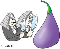 Supreme Court criticized for giving clearance to Bt Brinjal