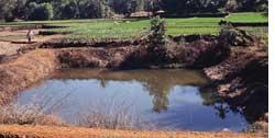 Plastic ponds