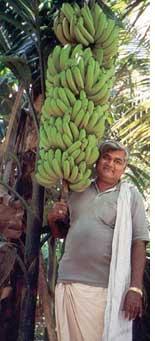 Chella Krishnamurthy, 57, murdered