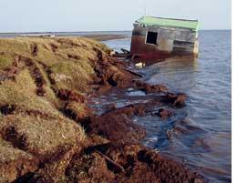 Erosion will change the Arctic landscape