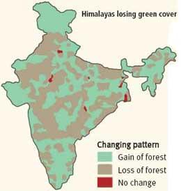 India losing biodiversity hotspots