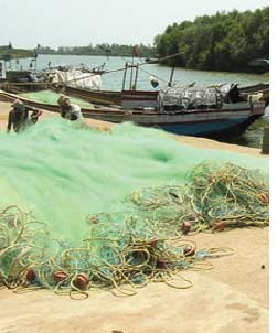 Conservation hits Orissa fishers