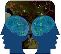 Devanagri neuro-deciphered