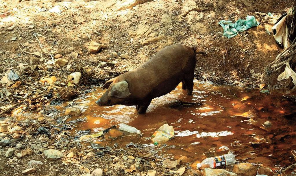 The San Sebastian gold mine has polluted nearby waterways with heavy metal,