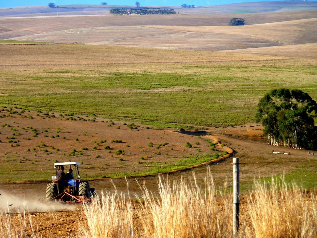 About 26.7 million hectares of agricultural land have been handed over to foreign investors since the year 2000