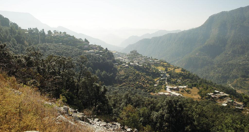गोपेश्वर गांव में ग्रामीणों ने बांझ का जंगल उगा लिया है। इससे पि छले २५ सालों से गांव की कि सी भी महि ला को चारा या जलावन की लकड़ी इकट्ठा करने दूर के जंगलों में नहीं जाना पड़ता।