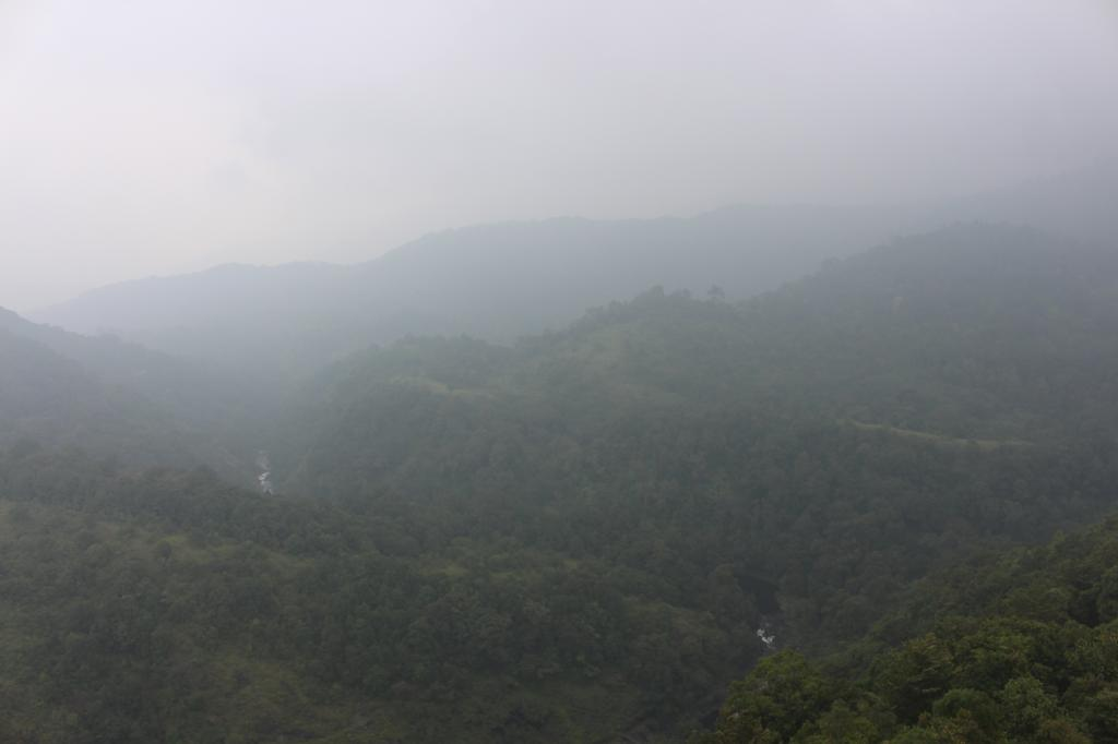The misty beauty of Silent Valley when seen from the forest watch tower. The forest is so dense that wildlife sightings are rare Credit: Jemima Rohekar