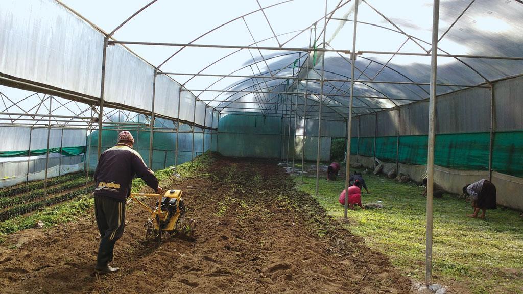 farmer ngo in himachal pradesh