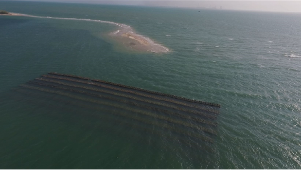 Aerial view of deployed AR structure in one block in the Gulf of Mannar (Credit: ISW)