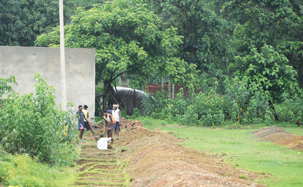 पूर्वी सिंहभूम जिले के सासांडीह गांव में मनरेगा के लाभार्थी आम के बाग में काम करते हैं। इनमें से कई लोगों को पिछले दो महीने से मजदूरी नहीं मिली है क्योंकि ऑपरेटर ने इस योजना के तहत रखी जाने वाली प्रबंधन सूचना प्रणाली में उनकी गलत आधार संख्या डाल दी है (फोटो: आदित्यन पीसी / सीएसई)