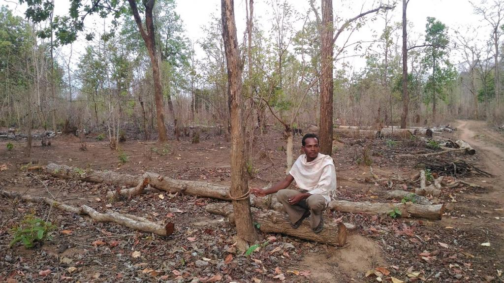 The state has not conducted any survey to ascertain total number of beneficiaries of Forest Rights Act. Credit: Vikas Choudhary / CSE