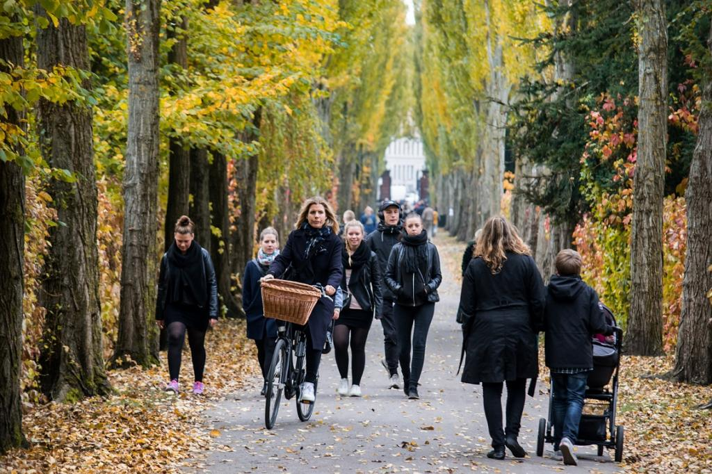 Past research has shown positive association between percentage of green space in living environment and perceived general health of residents. Credit: Kristoffer Trolle / Flickr