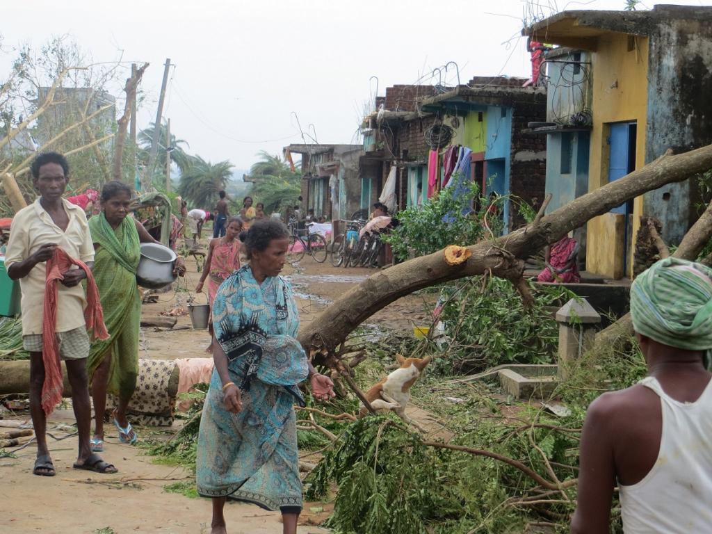 At least dozens of houses were damaged in Tamil Nadu's Kanyakumari district.   Credit: European Commission / Flickr