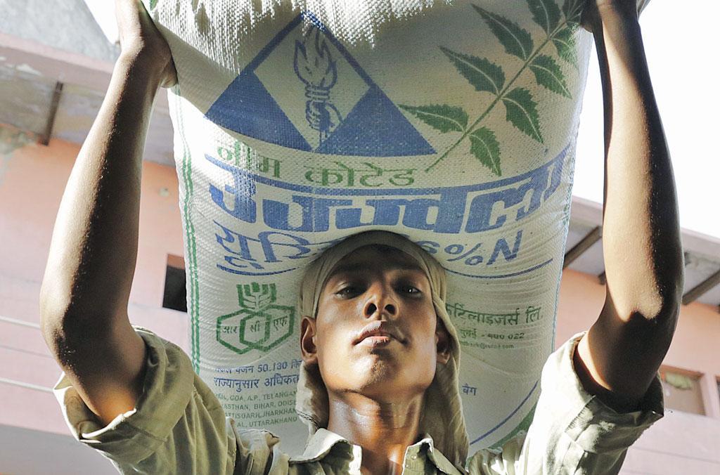भारत ने पिछले 60 सालों में यूरिया का अत्यधिक इस्तेमाल किया है जिससे कृषि उत्पादकता में कई गुणा बढ़ोतरी हुई है (विकास चौधरी / सीएसई)