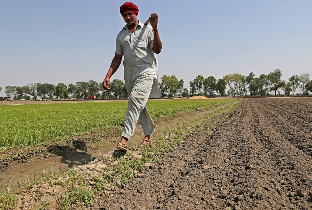 The operational cost of irrigation projects often exceeds the value of the crops produced in the land. Credit: Vikas Choudhary / CSE