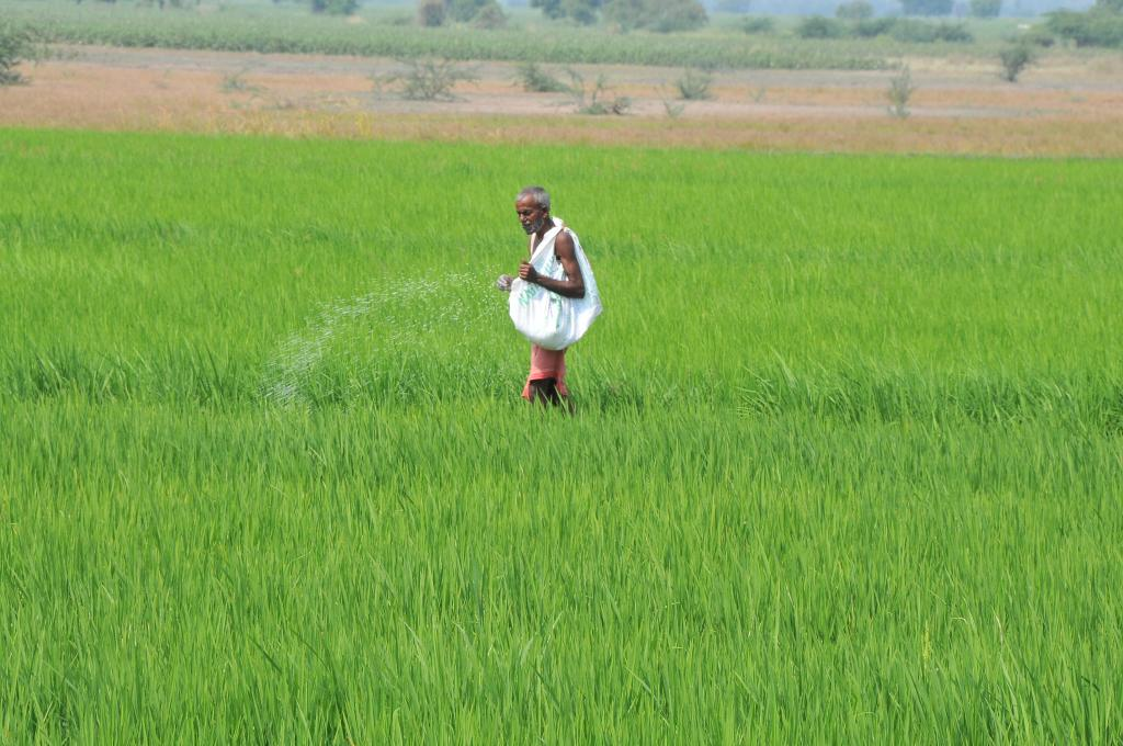 The ill-effects of pesticides and deaths related to it in our country are on the rise. Credit: Meeta Ahlawat
