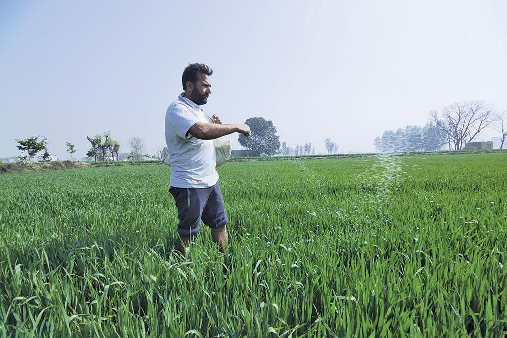 अमृतसर जिले के बंडारा गांव के बलदेव सिंह का मानना है िक किसानों के लिए खेती घाटे का सौदा हो गई है (ईशानी कसेरा / सीएसई)