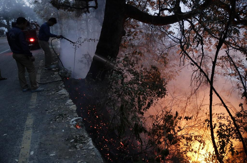 Around 898 hectares of forest land has been engulfed by forest fire in Uttarakhand with 542 fire incidents reported across the hill state till April 28. Credit: Vikas Choudhary