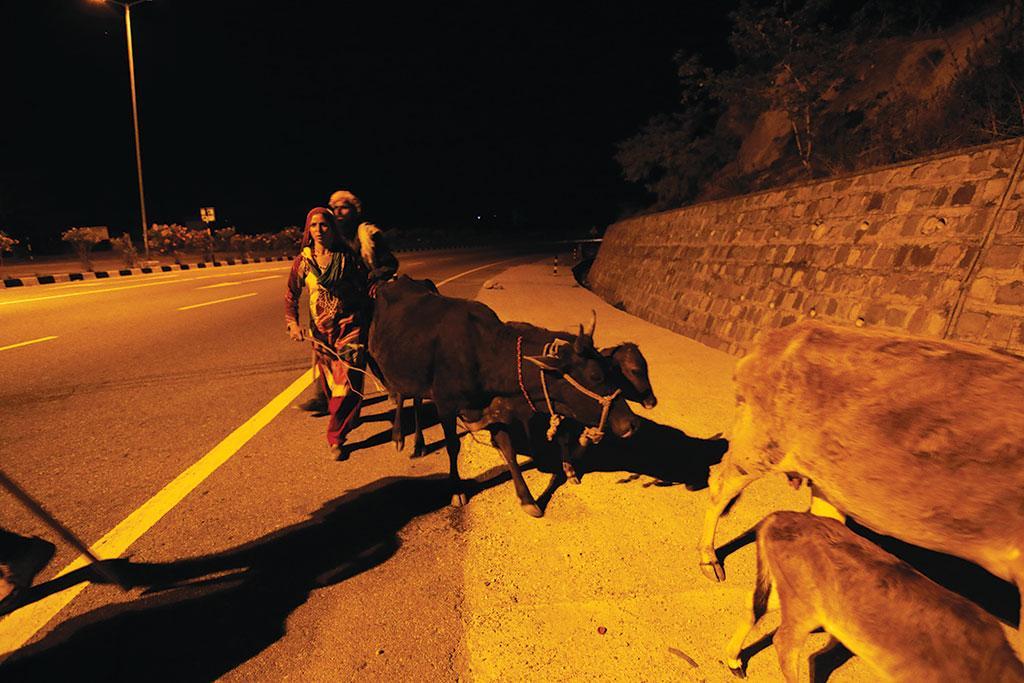 जम्मू जिले में बकरवाल समुदाय कश्मीर की तरफ कूच करता हुआ  (ईशान कुकरेती / सीएसई)