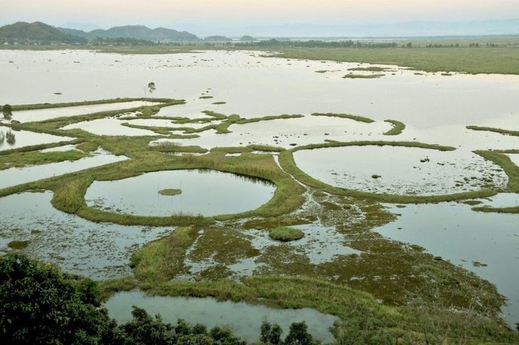 लोकटक झील और तैरती फूमदियां