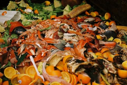First-ever international standard can help countries measure food loss and waste