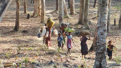 India simply does not acknowledge forest drought