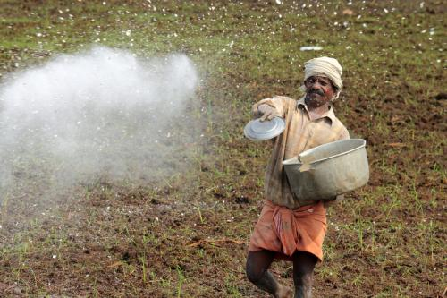 About 292 districts account for consumption of 85 per cent of all of the country's fertilisers (Credit: iStock Images)