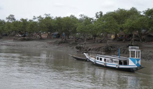 Proposed thermal plant will damage Sundarbans