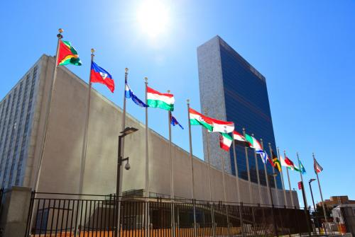 UN General Assembly discusses antimicrobial resistance