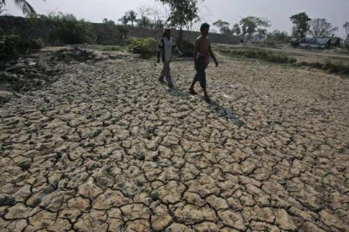 Kerala declared drought-hit; water level in dams falls by 40 per cent