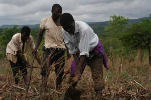 Challenges stand in way of African agricultural transformation