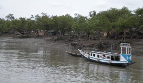 Kolkata and Sundarbans: climate change rhetorics