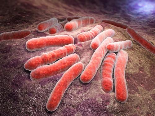 Latest transmission patterns for drug resistant TB pose a new challenge