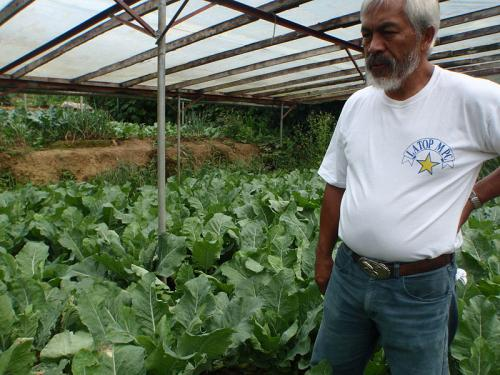 Harming the organic farming movement