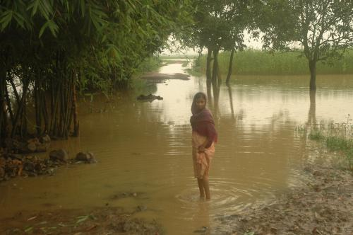 What's stalling flood management projects? CAG points to lack of integrated approach