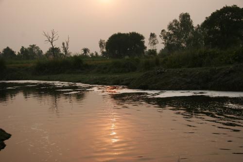 गोमती नदी में भारी धातुओं का स्तर चिंताजनक