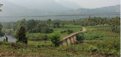 Only 16 per cent of potential community forest rights granted in Kerala