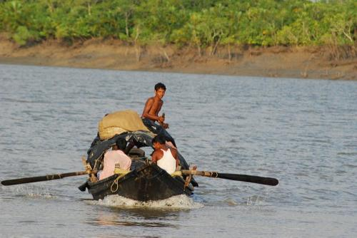 Fishing and farming are the main occupations in the Sundarbans