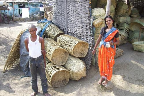 Odisha planning to scrap minimum support price for minor forest produce
