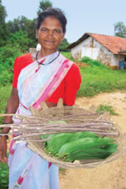 Continued low expenditure in 'Minimum Support Price for Minor Forest Produce' scheme