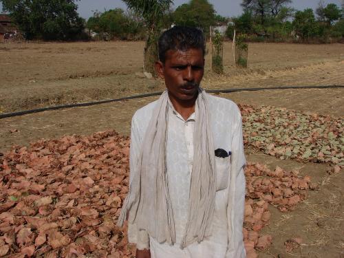 100 gram sabhas in Odisha's Kalahandi district to assert rights on bamboo, kendu