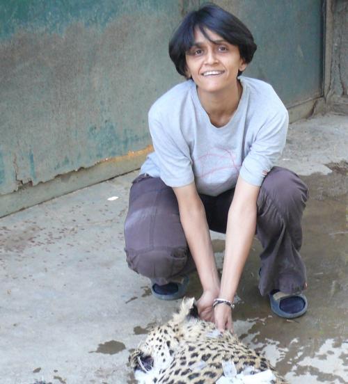 Vidya Athreya   Picture Courtesy: Wildlife Conservation Society