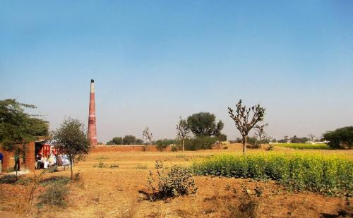 Point of No Agri-returns Part 7: India diverts 10 million hectares of productive agri-lands, replaces them with barren lands for cultivation